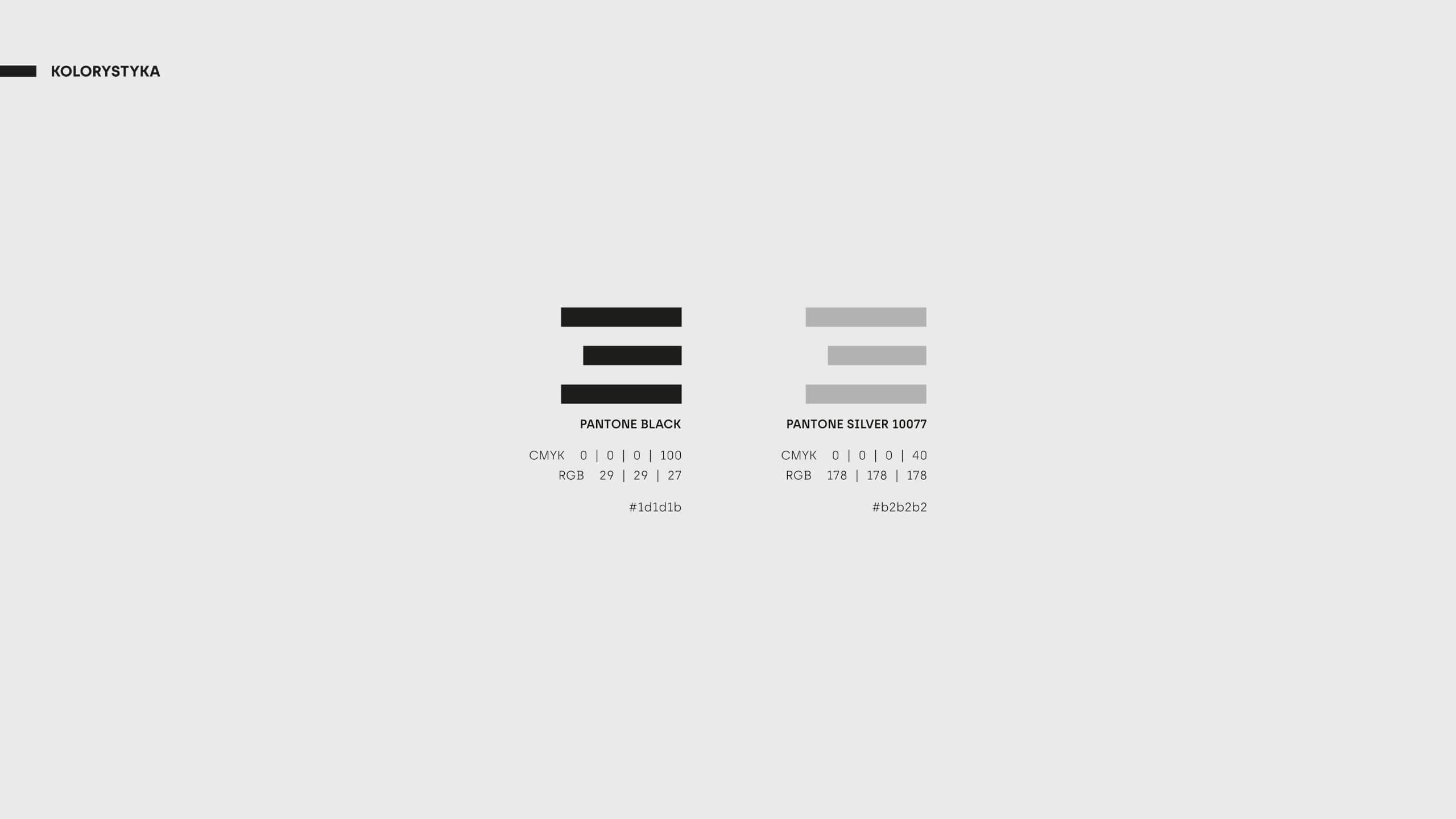 E9 Controls - Kolorystyka identyfikacji wizualnej