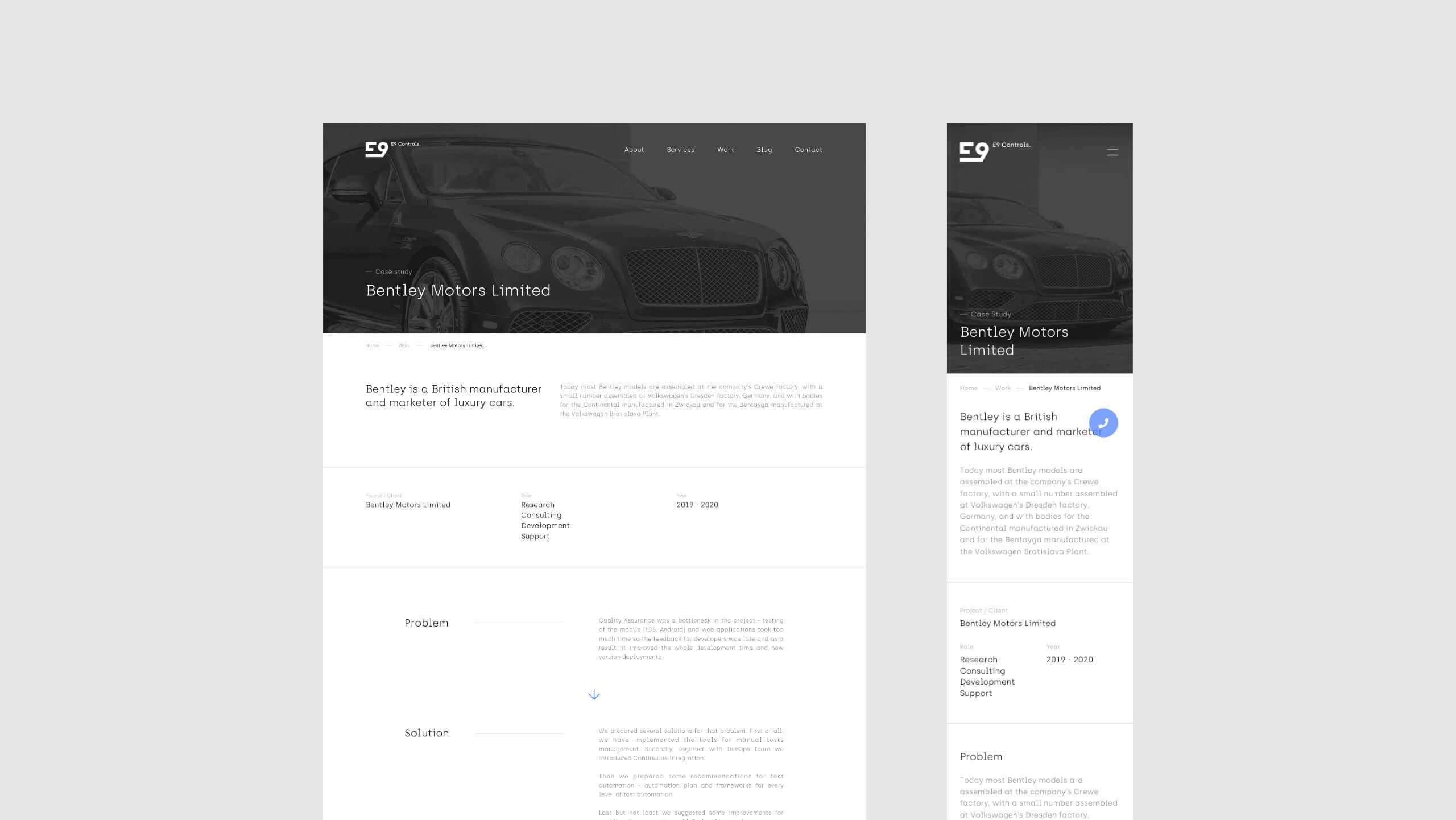 E9 Controls - Responsywna strona internetowa po angielsku